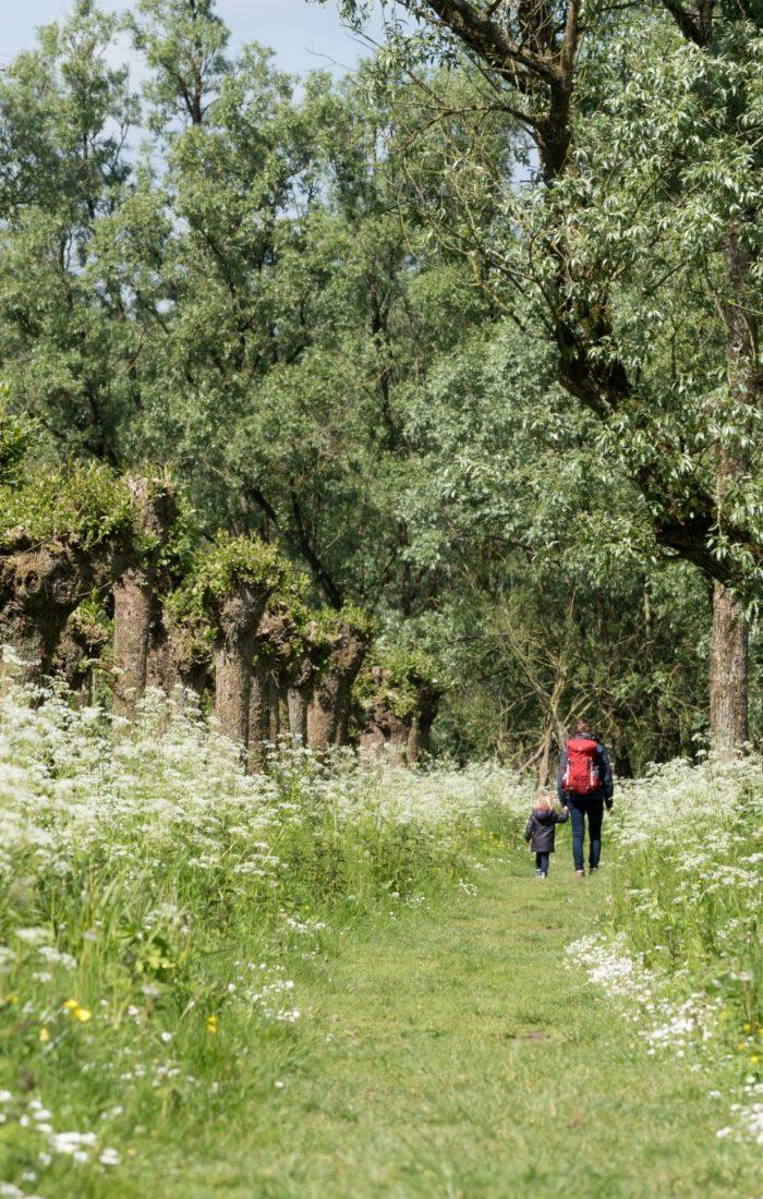 Natuur en biodiversiteit
