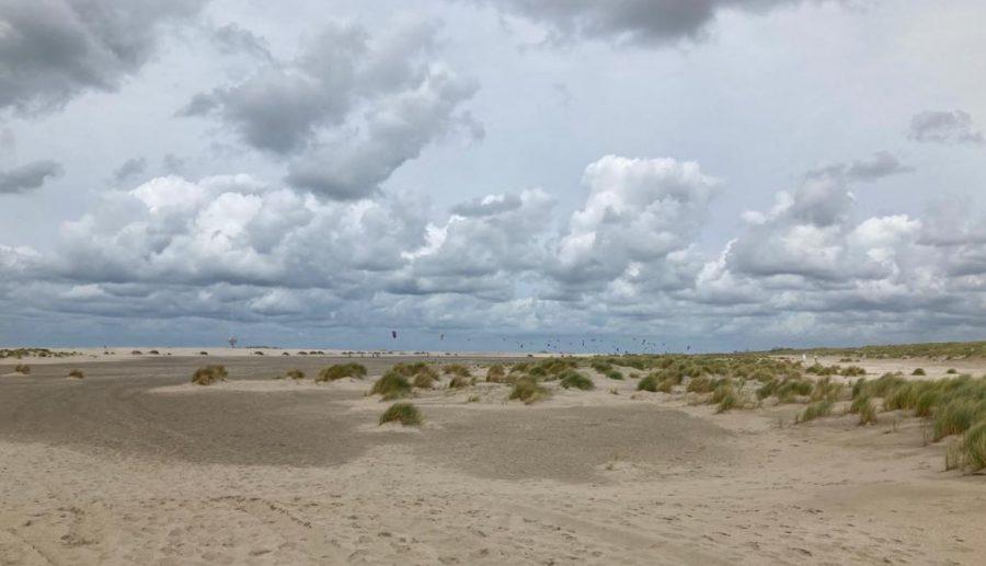 Grote actie in natuur langs Nederlandse kust